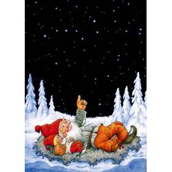 5-pack Julkort Ser du Stjärnan